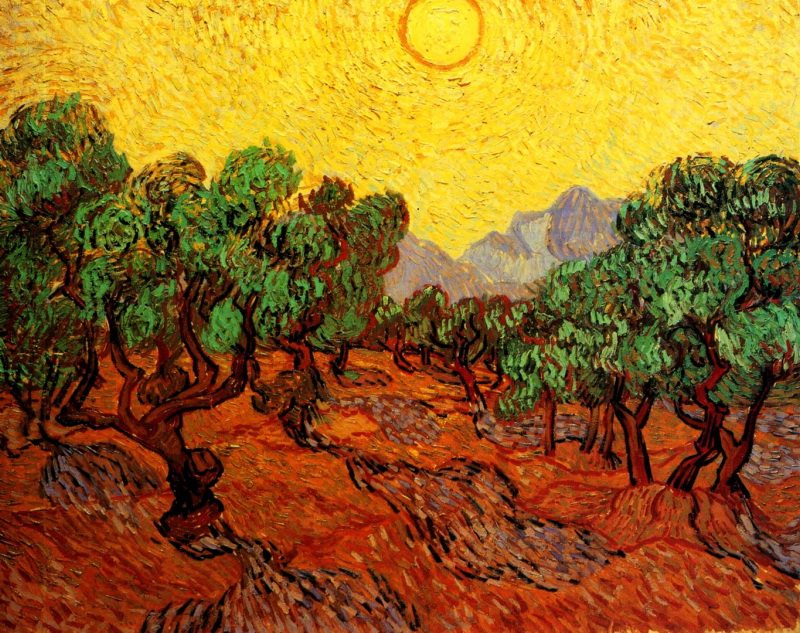 Vincent van Gogh-Olive Trees with Yellow Sky and Sun.jpg